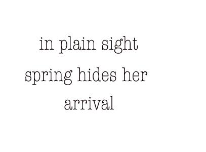 springhides