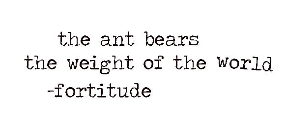 antweight