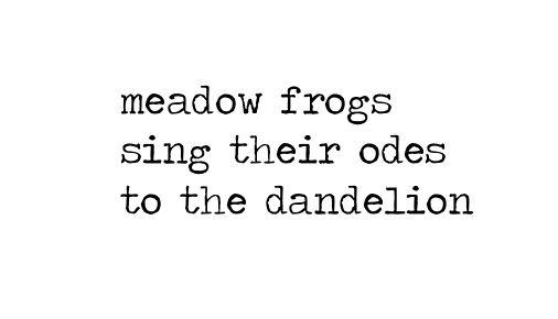 dandelion odes